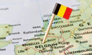 Moderate growth for home appliances in Belgium
